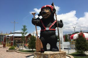 Bear Country Fun Park