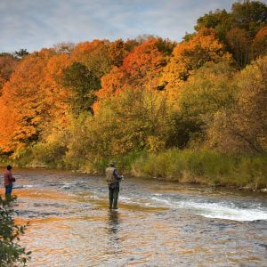 22nd Annual Fall Smoky Mountain Trout Tournament