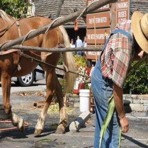 17th Annual Old Mill Heritage Day