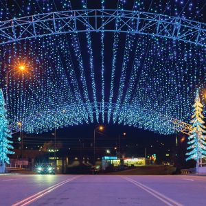 Winterfest Lights